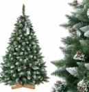 Le choix de son sapin de Noël
