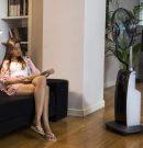 Tout ce qu'il faut savoir sur le ventilateur brumisateur